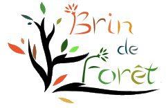 cropped-logo_bdf2.jpg
