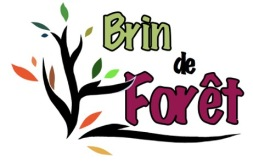 Logo Brin-de-Foret_Final