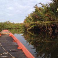 Rivière de Chi Phat (Cambodge)- Pauline