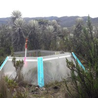 Une OTC installée dans le páramo de Sumapaz pour simuler le réchauffement climatique au niveau de la végétation tropicale alpine. Photo : Ewen Dano.