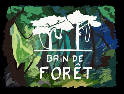 Brin de Forêt